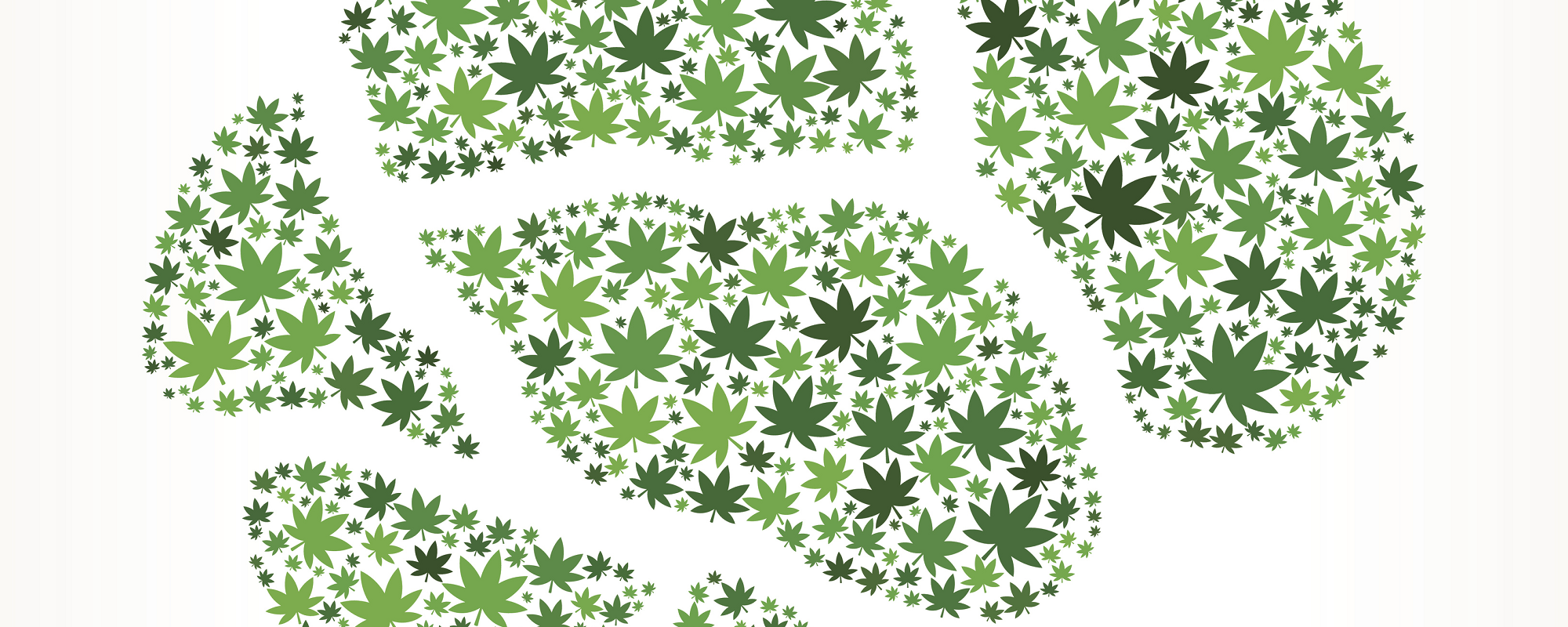 The Implications of Cannabidiol and the Brain