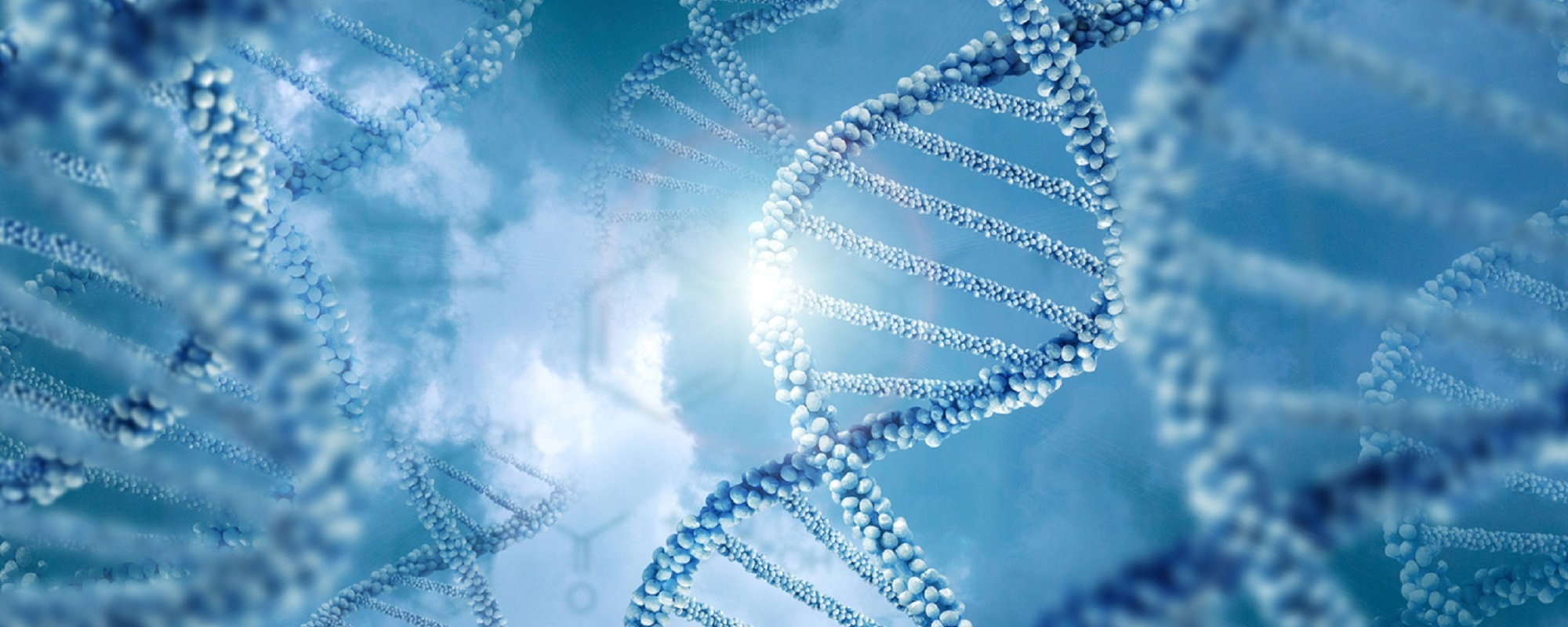 Genetic Sequencing and Polymerase Chain Reaction Technologies: Products and Emerging Trends