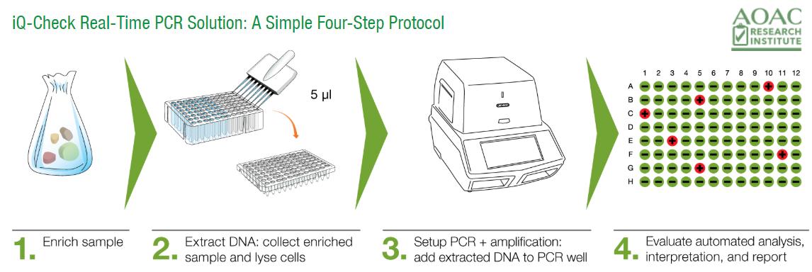 Bio-Rad RT-PCR Microbial Testing Solutions